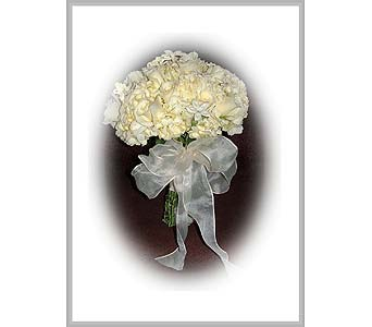 Roses, hydrangea & stephanotis tied bouquet in Tuckahoe NJ, Enchanting Florist & Gift Shop