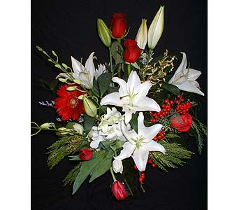 Premium Holiday Mix (Red, White & Green) in Dallas TX, Z's Florist