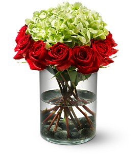 Ring of Fire in Chesapeake VA, Lasting Impressions Florist & Gifts