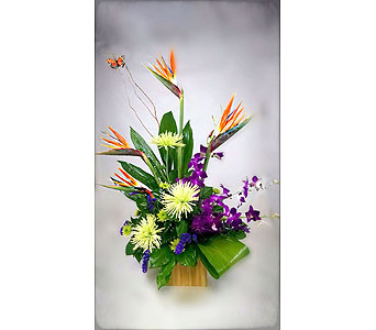 Tropical Paradise in Naples FL, Naples Flowers, Inc.