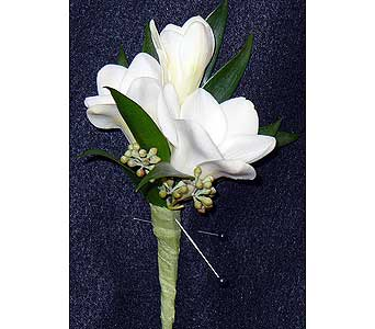 Freesia in Massapequa Park NY, Bayview Florist & Montage  1-800-800-7304
