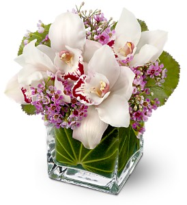 Teleflora's Lovely Orchids in Bakersfield CA, White Oaks Florist