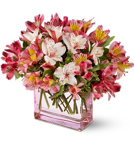 Teleflora's Always Alstroemeria in Longview TX, The Flower Peddler, Inc.