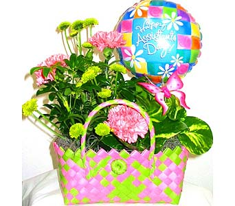 SEC70 Happy Assistant's Day Planter in Oklahoma City OK, Array of Flowers & Gifts