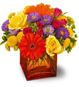 Teleflora's Another Year Bolder TFWEB167 in Oklahoma City OK, Array of Flowers & Gifts