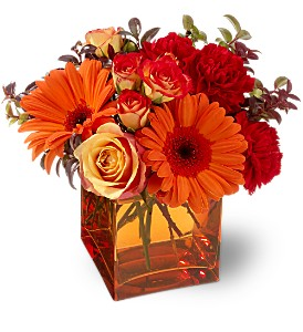 Teleflora's Sunrise Sunset in Fargo ND, Dalbol Flowers & Gifts, Inc.