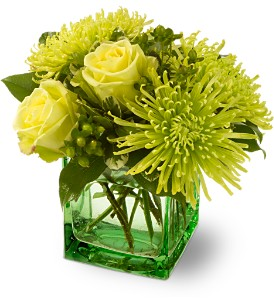 Teleflora's Green Light in Vancouver BC, Davie Flowers