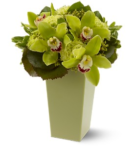 Green with Envy in Chapel Hill NC, Floral Expressions and Gifts