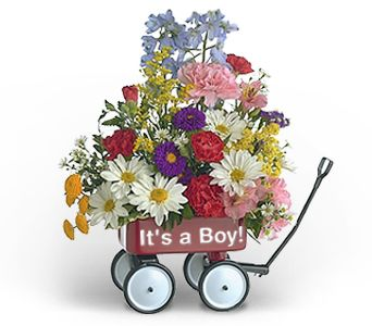 Baby's First Wagon (Boy) in Chicago IL, Sauganash Flowers