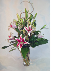 Oriental Stargazers in Naples FL, Gene's 5th Ave Florist