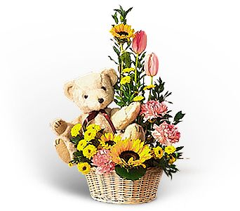 Basket of Bear with Blooms in Pleasanton CA, Bloomies On Main LLC