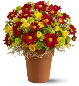 Country Roads in Libertyville IL, Libertyville Florist