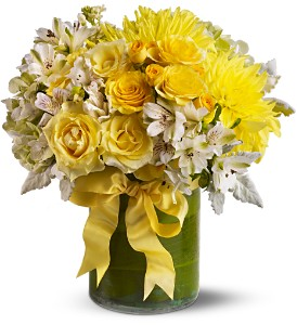 Lemon Aid in Toronto ON, Capri Flowers & Gifts
