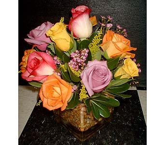 Assorted Rose Cube in Dallas TX, Z's Florist