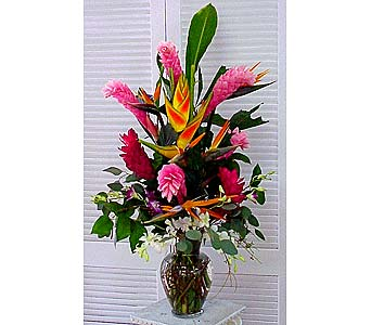 Exotic Arrangement in Houston TX, Athas Florist