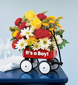 Baby's First Wagon - Boy in Glenview IL, Glenview Florist / Flower Shop