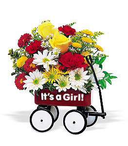 Baby's First Wagon - Girl in Glenview IL, Glenview Florist / Flower Shop