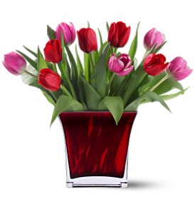 Teleflora's Tulips of Love Bouquet in Bloomington IL, Beck's Family Florist
