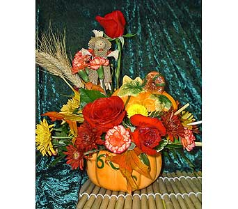 Pumpkin Patch in McKees Rocks PA, Muzik's Floral & Gifts