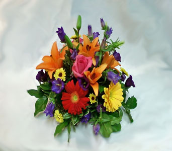 Sunny Daze in Naples FL, Gene's 5th Ave Florist