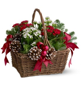 Christmas Garden Basket in Houston TX, Fancy Flowers