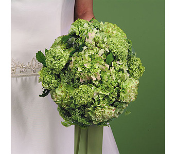 Green Hydrangea and Carnation Bouquet in Abington MA, The Hutcheon's Flower Co, Inc.