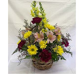 Fresh Mixed Basket Arrangement in Orange City FL, Orange City Florist