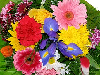 Spring Has Sprung in Wading River NY, Forte's Wading River Florist