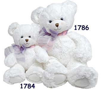 PLUSH154 ''Dena'' Bears in Oklahoma City OK, Array of Flowers & Gifts