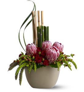 Zen Protea in Buffalo Grove IL, Blooming Grove Flowers & Gifts