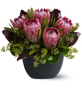 Positively Protea in Santa Monica CA, Edelweiss Flower Boutique