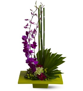 Zen Artistry in Los Angeles CA, Los Angeles Florist