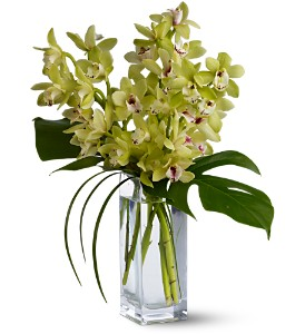 Teleflora's Orchid Elegance in Lenexa KS, Eden Floral and Events