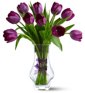 Royal Tulips in Guelph ON, Patti's Flower Boutique