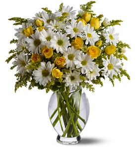 Teleflora's Daisy Days Deluxe in New York NY, Fellan Florists Floral Galleria