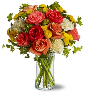 Citrus Kissed in Moline IL, K'nees Florists