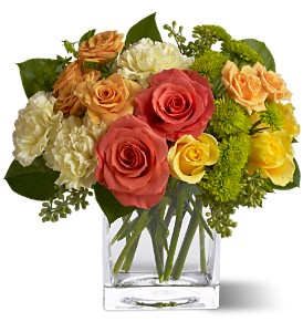 Teleflora's Citrus Splash in Thornhill ON, Wisteria Floral Design
