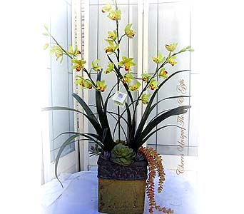 Silk Cymbidium Plants in Lake Forest CA, Cheers Floral Creations