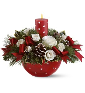 Holiday Star Bowl Bouquet by Teleflora in Lakeland FL, Petals, The Flower Shoppe