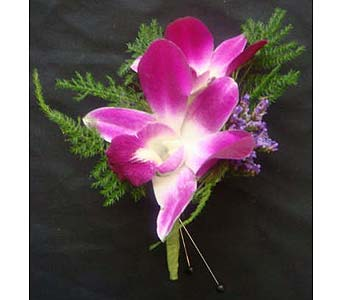 Purple Dendro in Farmington CT, Haworth's Flowers & Gifts, LLC.