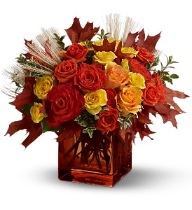 Teleflora's Fine Fall Roses in New Castle DE, The Flower Place