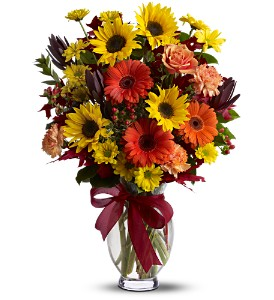 Teleflora's Glorious Autumn in Oklahoma City OK, Array of Flowers & Gifts