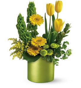 Teleflora's Citrus Sunshine Bouquet in Isanti MN, Elaine's Flowers & Gifts