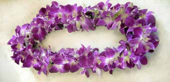 Lei purple dendrobium single  in Pleasanton CA, Tri Valley Flowers