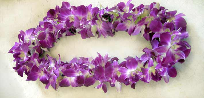 Lei purple dendrobium double  in Pleasanton CA, Tri Valley Flowers