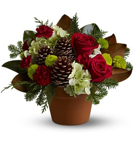 Countryside Christmas in Bend OR, All Occasion Flowers & Gifts