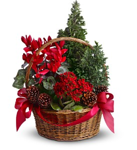Tannenbaum Basket in Houston TX, Fancy Flowers
