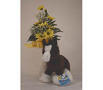 Clydesdale Horse in Indianapolis IN, Gillespie Florists
