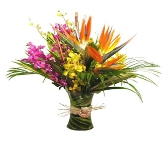 Tropical Paradise in Stuart FL, Harbour Bay Florist