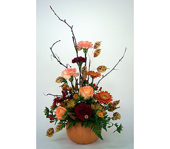 Pumpkin Spice in Indianapolis IN, Gillespie Florists